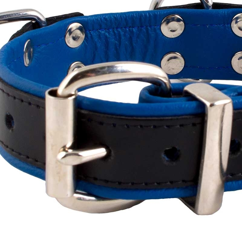 MISTER B LEATHER COLLAR 61061 color code