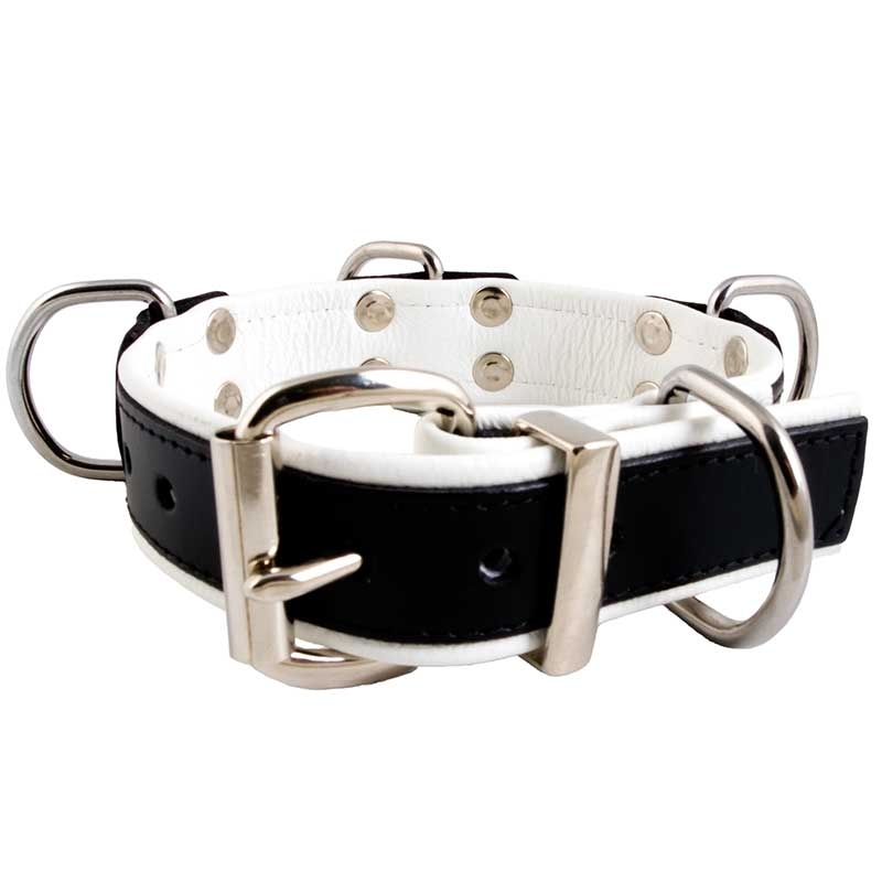 MISTER B LEATHER COLLAR 61064 color code