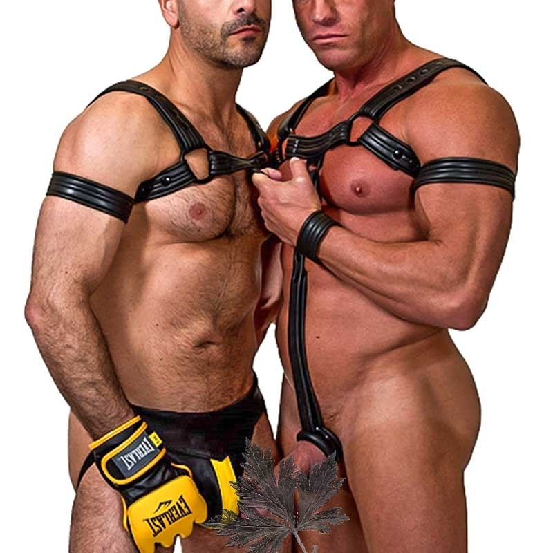 MISTER B NEOPRENE HARNESS 346800 665 bulldog